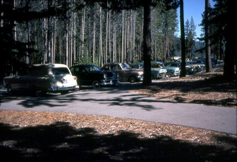 USA 1981 - 16