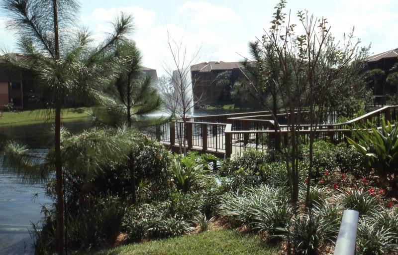 Florida USA 1989 - 99